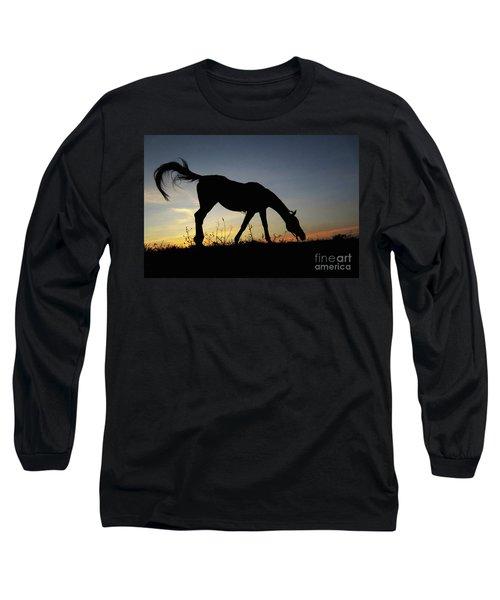 Sunset Horse Long Sleeve T-Shirt