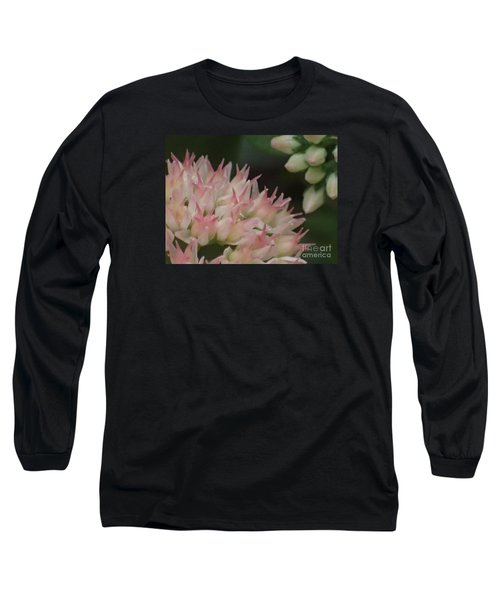 Sweet Dreams Long Sleeve T-Shirt by Christina Verdgeline