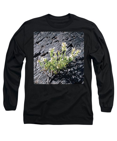 T-107709 Hot Rock Penstemon Long Sleeve T-Shirt