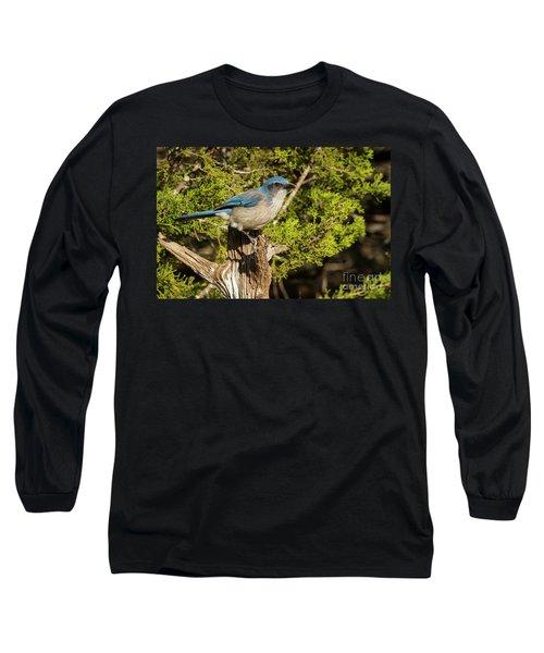 Texas Scrub Jay  Long Sleeve T-Shirt