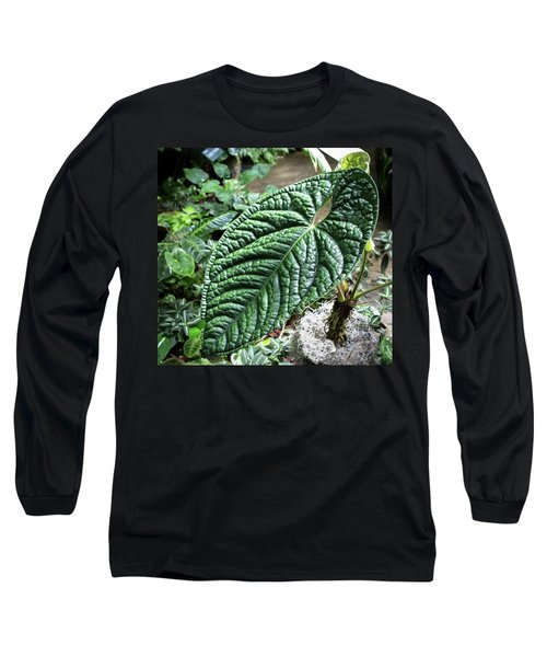 Texture Of A Leaf Long Sleeve T-Shirt