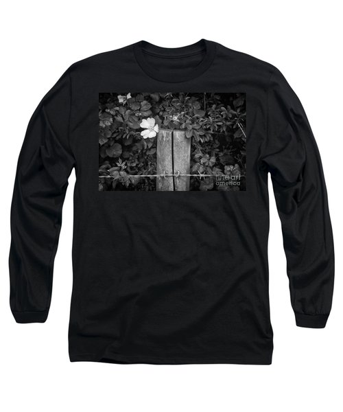 The Allotment Project - Dog Rose Long Sleeve T-Shirt