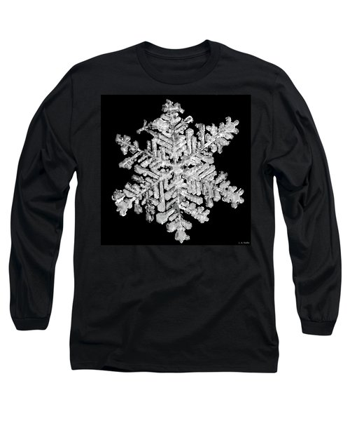 The Beauty Of Winter Long Sleeve T-Shirt