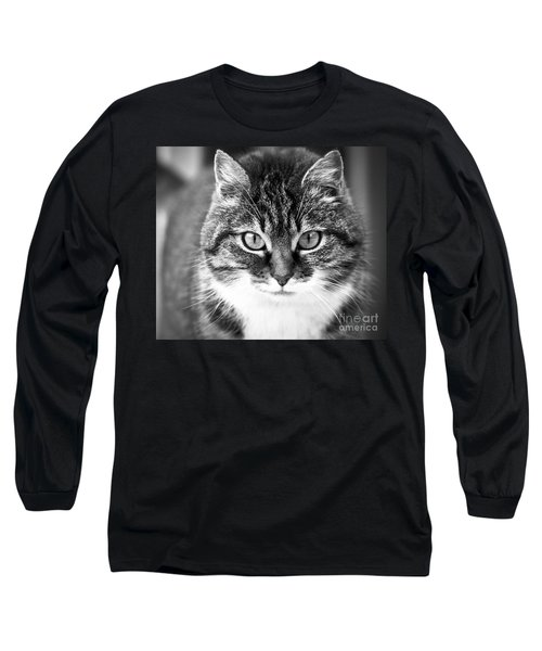 The Cat Stare Down Long Sleeve T-Shirt