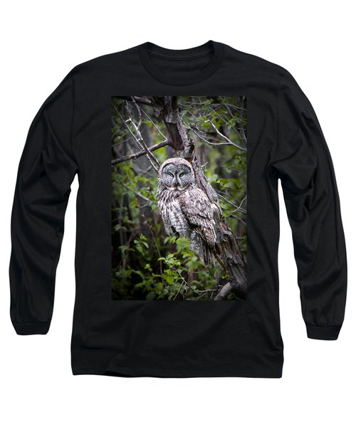 The Great Gray Long Sleeve T-Shirt
