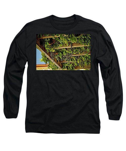 The Hanging Grapes Long Sleeve T-Shirt