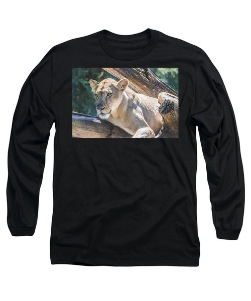 The Lioness Long Sleeve T-Shirt by David Collins