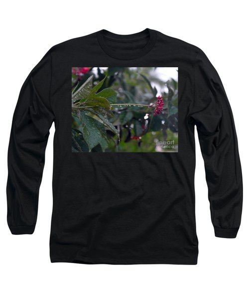 The Morning Kiss Long Sleeve T-Shirt by Irma BACKELANT GALLERIES