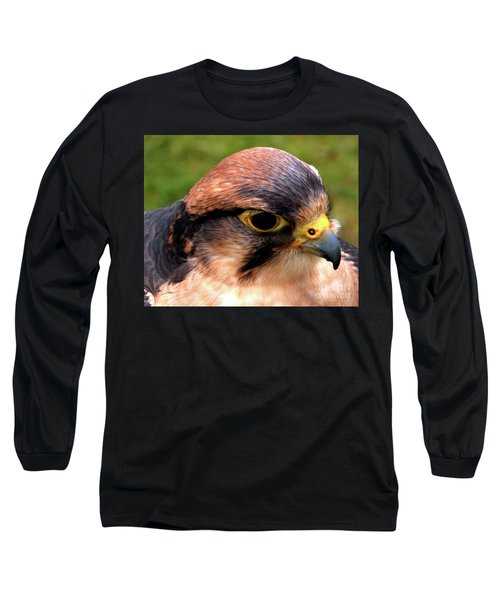 The Peregrine Long Sleeve T-Shirt by Stephen Melia