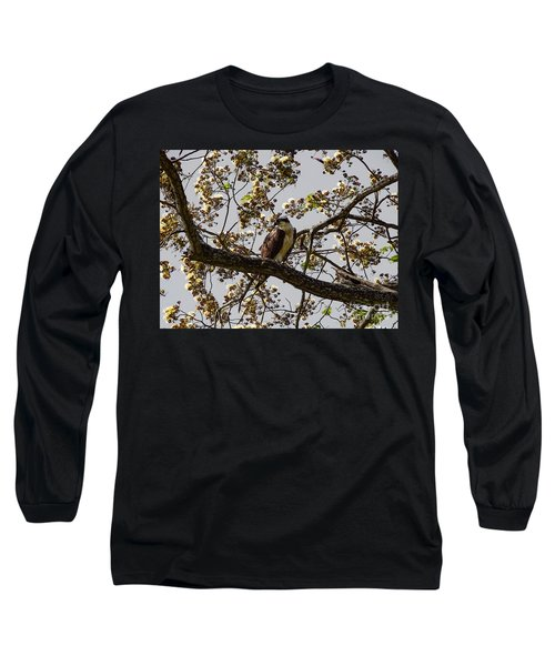 The Sea Eagle Long Sleeve T-Shirt