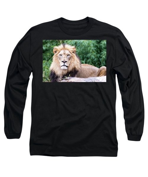 The Stare Down Long Sleeve T-Shirt