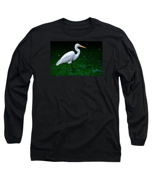The Stroll Long Sleeve T-Shirt by Brian Stevens