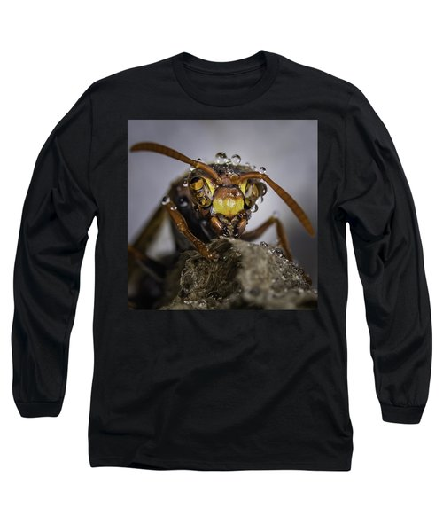 Long Sleeve T-Shirt featuring the photograph The Wasp by Chris Cousins