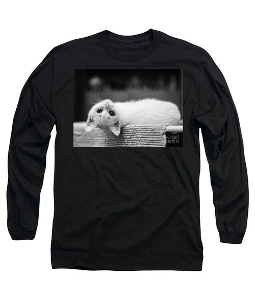 The White Kitten Long Sleeve T-Shirt