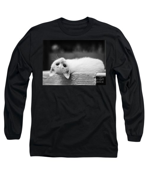 The White Kitten Long Sleeve T-Shirt