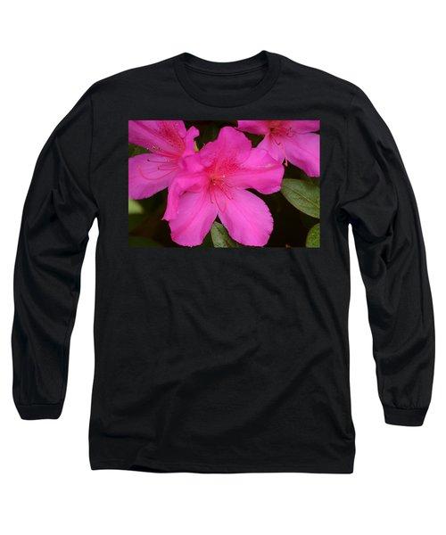 Three Azaleas Long Sleeve T-Shirt by Warren Thompson