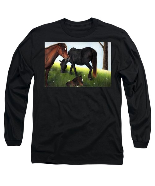 Three Horses Long Sleeve T-Shirt
