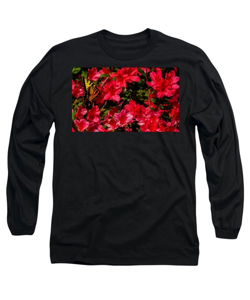Tiger Swallowtail On A Red Azalea Long Sleeve T-Shirt by John Harding
