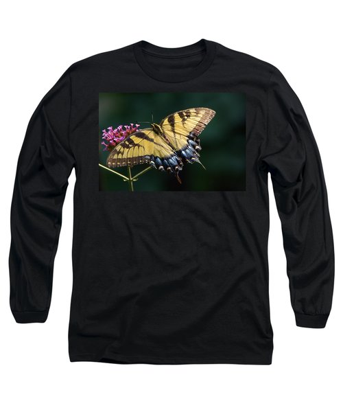 Long Sleeve T-Shirt featuring the photograph Tigress And Verbena by Byron Varvarigos