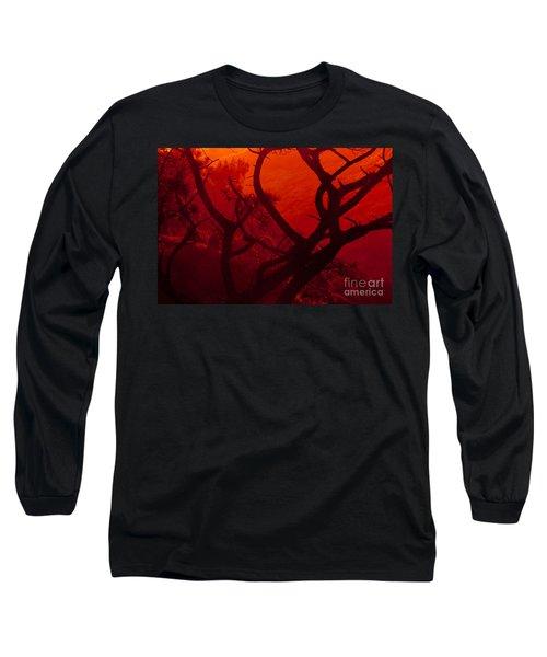 Torrey Pines Glow Long Sleeve T-Shirt