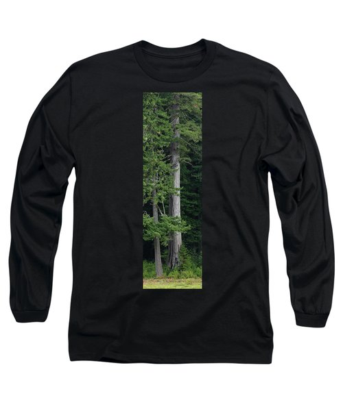 Towering Long Sleeve T-Shirt