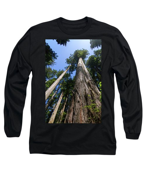 Towering Redwoods Long Sleeve T-Shirt