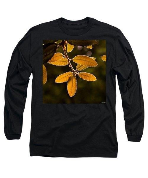 Translucent Leaves Long Sleeve T-Shirt