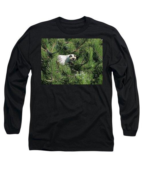 Tree Bandit Long Sleeve T-Shirt