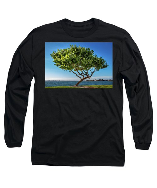 Tree On The Bay Long Sleeve T-Shirt