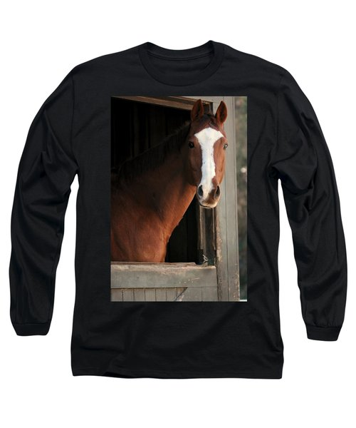 T's Window Long Sleeve T-Shirt by Angela Rath