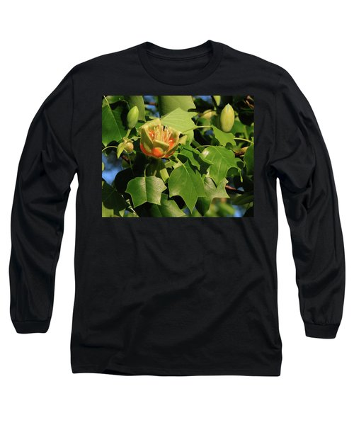 Tulip Poplar Long Sleeve T-Shirt