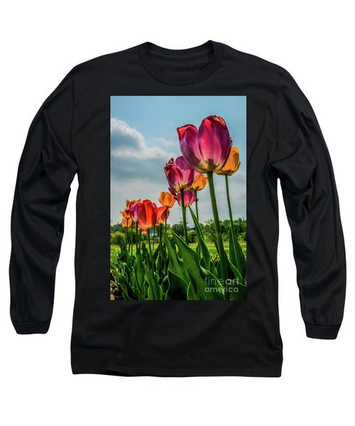 Tulips In The Spring Long Sleeve T-Shirt by Jane Axman