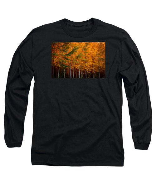 Turning Into Gold Long Sleeve T-Shirt by Dan Mihai