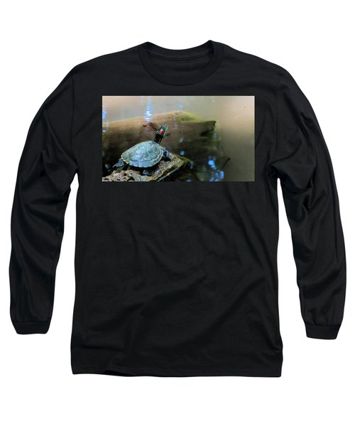 Turtle On Rock Long Sleeve T-Shirt by Mark Barclay