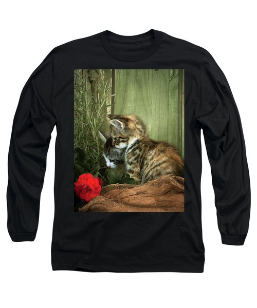 Two Cute Kittens Long Sleeve T-Shirt