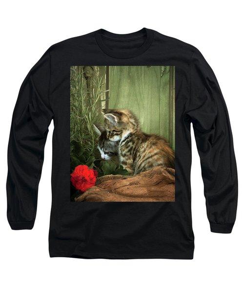 Two Cute Kittens Long Sleeve T-Shirt