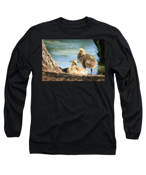 Two Little Goslings Long Sleeve T-Shirt by Joni Eskridge