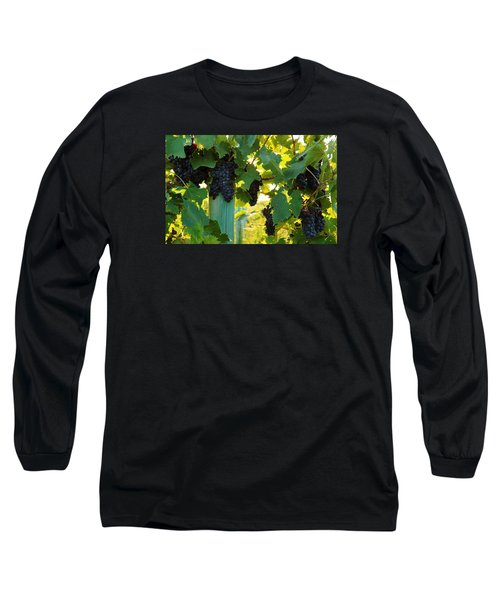 Long Sleeve T-Shirt featuring the photograph Under The Leaves by Lynn Hopwood