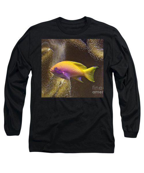 Underwater Dream Long Sleeve T-Shirt by Xn Tyler