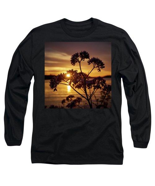 Valerian Sunset Long Sleeve T-Shirt by Jouko Lehto