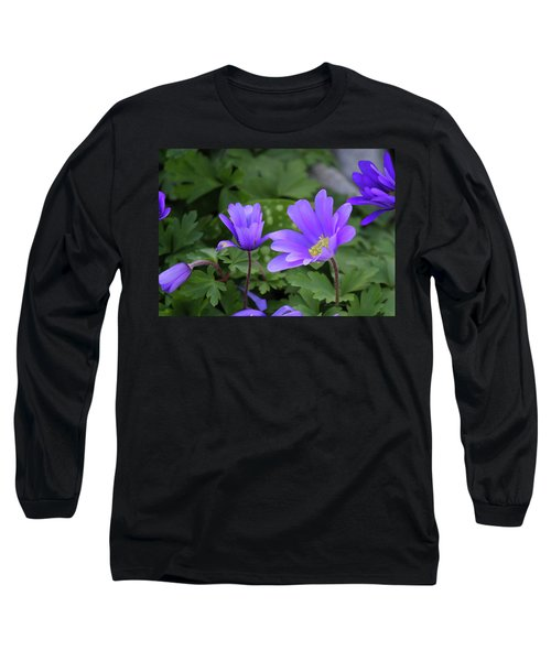 Vinca In The Morning Long Sleeve T-Shirt