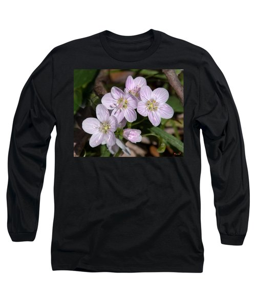 Virginia Or Narrowleaf Spring-beauty Dspf041 Long Sleeve T-Shirt