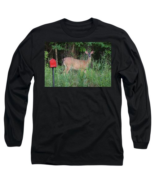 Long Sleeve T-Shirt featuring the photograph Waiting For Mailman by Rick Friedle