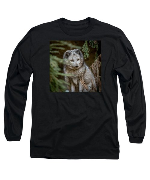 Long Sleeve T-Shirt featuring the photograph Waiting For Red by Wade Brooks