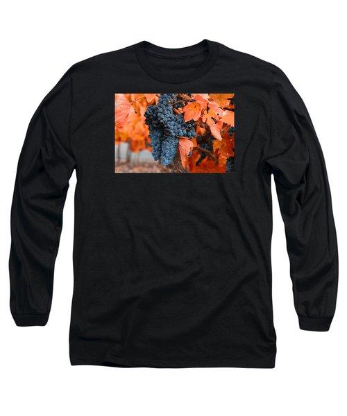 Long Sleeve T-Shirt featuring the photograph Walking Though The Vineyard by Lynn Hopwood