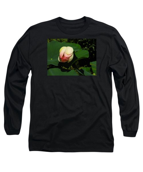Water Lily Long Sleeve T-Shirt by Ernst Dittmar