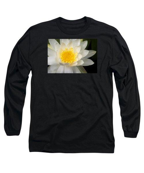 Water Lily II Long Sleeve T-Shirt