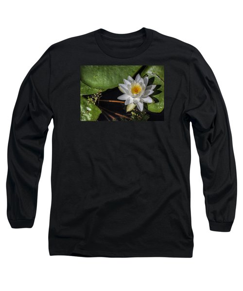 Water Lily Long Sleeve T-Shirt by Steve Gravano