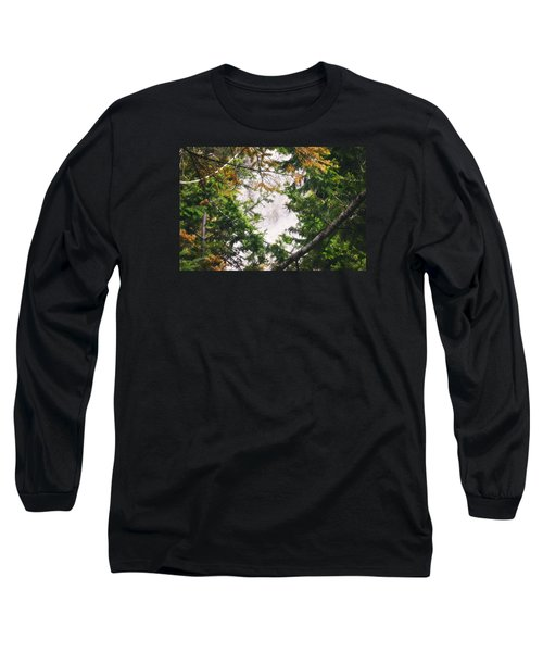 Waterfall Calling My Name Long Sleeve T-Shirt by Janie Johnson