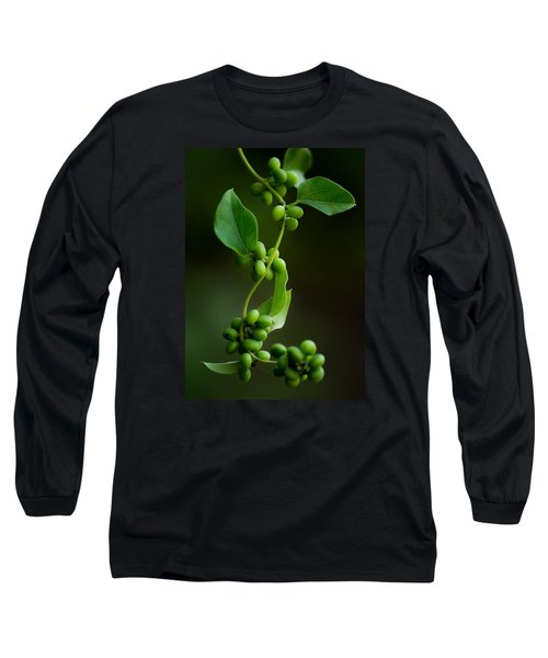 Weaving Vines Long Sleeve T-Shirt by Shelby  Young